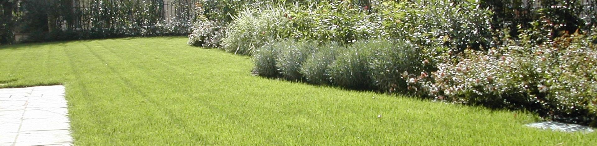 Giardini sospesi realizzazione giardini pensili verde for Realizzazione giardini pensili
