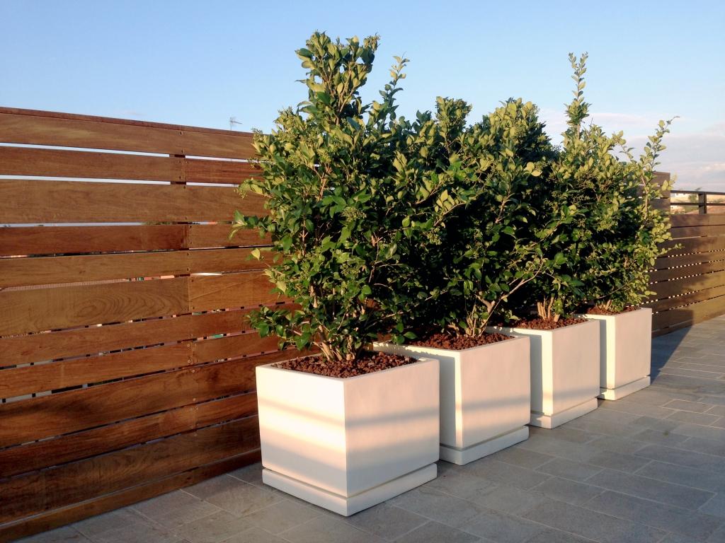 Realizzazione Terrazze Progettare Un Terrazzo