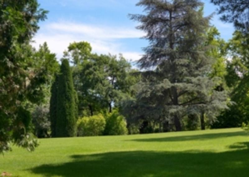 Pavimenti esterni pavimenti giardino pavimentazione for Prato manutenzione